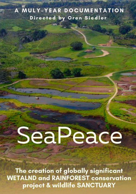 sea peace poster
