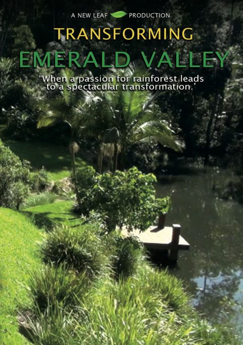 transforming emerald valley poster